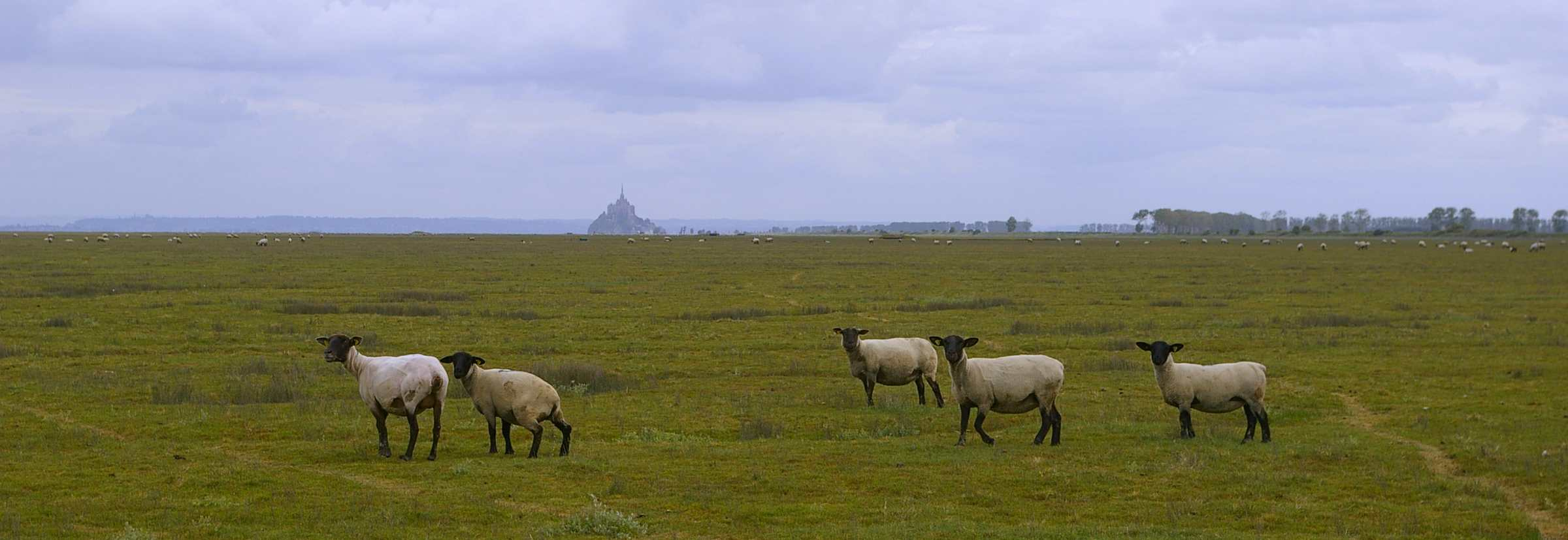 Guide Mont St Michel - Normandie